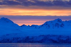 White snowy mountain, blue glacier Svalbard, Norway. Ice in ocean. Iceberg twilight in North pole. Pink clouds with ice floe. Beau Stock Photo