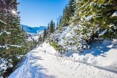 Trail to Hala Gasienicowa, Tatra mountans, Poland Royalty Free Stock Photography