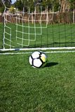 White soccer ball in the gate on a green grassy football field Royalty Free Stock Photo