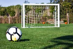 White soccer ball in the gate on a green grassy football field Stock Images