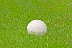 White Soccer Ball In Green Grass Royalty Free Stock Image