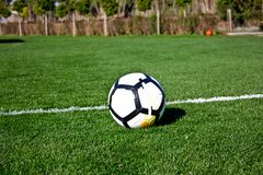 White soccer ball on a green grassy football field Stock Images