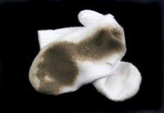 White Socks. Really dirty white socks worn outside in the dirt stock photo