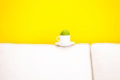 White sofa and cup with tangerine Royalty Free Stock Photo