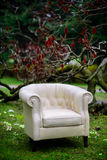 White sofa in the garden Royalty Free Stock Image