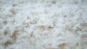 White soft feathers falling down stock video footage