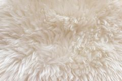 White soft wool texture background, cotton wool, light natural sheep wool, close-up texture of white fluffy fur,  wool with beige Royalty Free Stock Photos