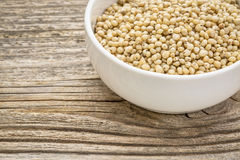 White sorghum grain. Gluten free, white sorghum grain in a small ceramic bowl against grained wood Royalty Free Stock Images