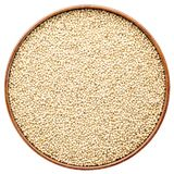White sorghum grain in isolated round tray. Gluten free white sorghum in a round wooden tray isolated on white stock photography