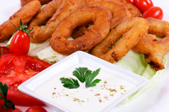 White souce. White onion souce and calamari Stock Photography