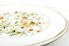 White soup Royalty Free Stock Image