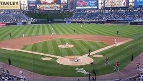 White Sox Imagen de archivo libre de regalías