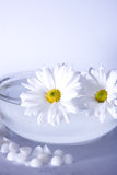 White Spa. With flowers and water bowl Stock Photography