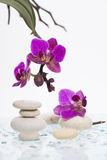 White spa stones and oriental flower. Spa still life with purple orchid and white zen stones. Wellness concept Royalty Free Stock Image