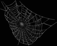 White spider web. Illustration with spider web isolated on black background Stock Images