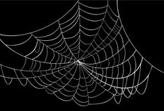 White spider web on black. Illustration with spider web isolated on black background Royalty Free Stock Photography