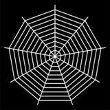 white spider web - Cobweb vector  on black background - illustration Stock Image