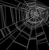 White spider web isolated on the  black background Stock Photography