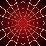 White spider web on red background vector illustration