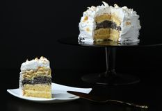 White sponge cake with icing Royalty Free Stock Photography