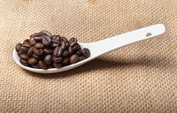 White spoon of coffee beans Royalty Free Stock Photography