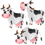 White spotted cow in three poses, vector animals Stock Photos