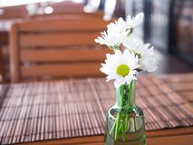 White Spray Chrysanthemum in vase was decorated on wooden table stock photo