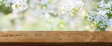 Spring flowers in a park with rustic wooden table Royalty Free Stock Photo