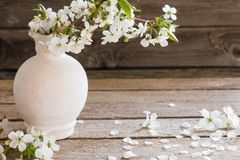 White spring flowers in vase on wooden background Royalty Free Stock Photos