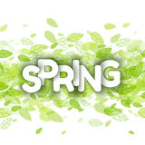 White spring sign over green leaves Royalty Free Stock Image