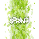 White spring sign over green leaves Stock Photography