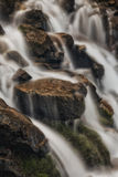 White Spring Water. Slow exposure river in the Wasatch national forest in Utah USA Stock Photography