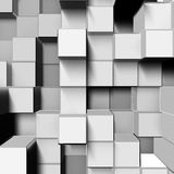 White square Stock Images