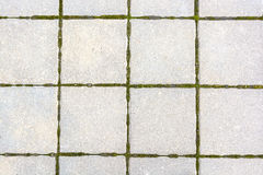 White square tiles with moss between them Royalty Free Stock Photos