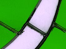 White stained glass with green Stock Image