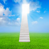 White stair up to open the door success and green grass. Concept Stock Photography
