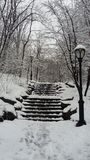 Hard storm of snow in Central Park stock images