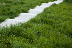 White stairs. Among green grass Royalty Free Stock Photography