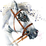 White Stallion watercolor drawing. White horse watercolor. Stock Photo
