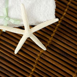 White Star on Brown Bamboo Stock Images