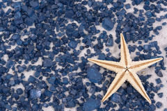 White starfish on black rocks Royalty Free Stock Photos