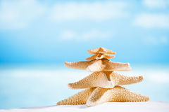 White starfish with ocean, beach, sky and seascape. Shallow dof Stock Photo