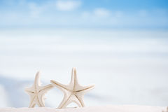 White starfish with ocean, boat, white sand beach, sky and seasc Stock Image