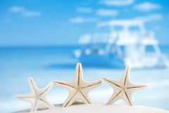 White starfish with ocean, boat, white sand beach Royalty Free Stock Photos