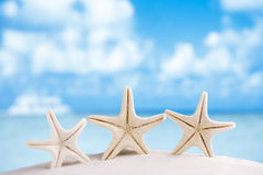 White starfish with ocean, boat, white sand beach Royalty Free Stock Images