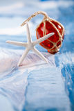 White starfish with red Glass float Stock Photography
