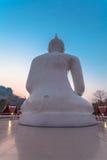 white statue buddha Royalty Free Stock Photography