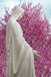 white Statue of virgin holy Maria with spring tree blossom background stock photo