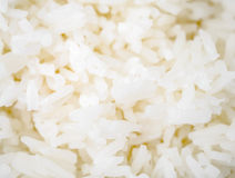 White steamed rice Stock Image