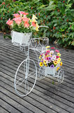 White steel bike and flower pots Stock Photography